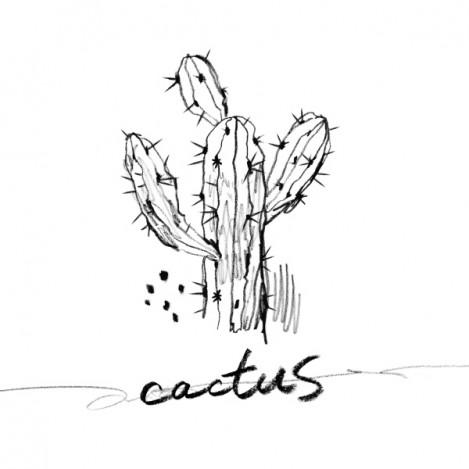 N 「Cactus」